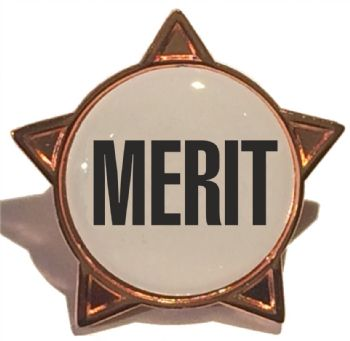 MERIT star badge